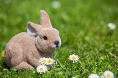 Easter bunny between daisies Stock Image
