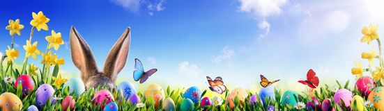 Easter - Bunny And Decorated Eggs Stock Photos