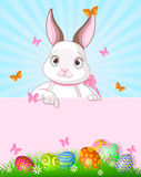 Easter Bunny Design Stock Image