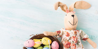 Easter bunny doll quail painted egg nest pastel backdrop Stock Images