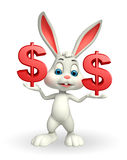 Easter Bunny with dollar Stock Photography