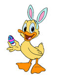 Easter Bunny Duckling Stock Image
