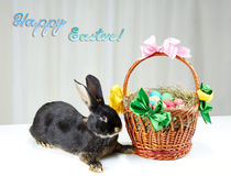 Easter bunny and easter basket on light background. Bunny and easter basket on light background Stock Photography