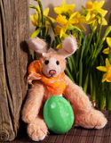 Easter Bunny with easter egg Royalty Free Stock Photography