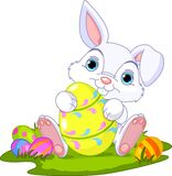 Easter. Bunny with Easter Egg. Cute Easter Bunny holding Easter Egg Stock Image