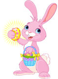 Easter Bunny with Easter Egg Royalty Free Stock Images