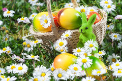 Easter Bunny with Easter Egg on Flowers Field Stock Photography