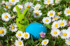 Easter Bunny and Easter Egg. On Flowers Field Royalty Free Stock Photos