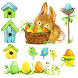 Easter bunny and Easter egg with garden decor. Background for congratulations. watercolor Royalty Free Stock Photo