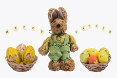 Easter bunny and Easter eggs . Royalty Free Stock Photos