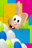 Easter Bunny Easter Eggs Festive Elements Stock Image