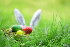 Easter bunny and Easter eggs on green grass outdoor Colorful eggs in the nest basket and ear rabbit on field royalty free stock photos