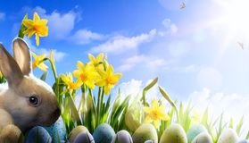 Art Easter bunny, Easter eggs and spring flower Royalty Free Stock Images