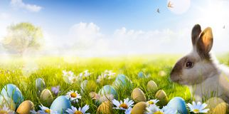 Art Easter bunny, Easter eggs and spring flower Stock Photos