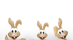 Easter bunny easter time Royalty Free Stock Image