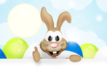 Easter bunny easter time Stock Photography