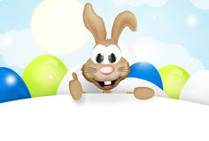 Easter bunny easter time Stock Photos