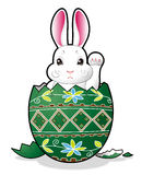 Easter bunny in the egg stock images