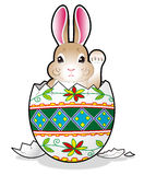 Easter bunny in the egg Stock Photography