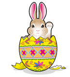 Easter bunny in the egg Royalty Free Stock Photo