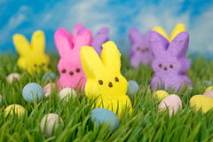 Easter bunny and egg candies Royalty Free Stock Image