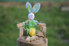 Easter bunny with egg Royalty Free Stock Photos
