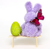 The Easter Bunny with Egg isolated Stock Image
