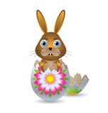 Easter Bunny in a Egg Shell Stock Images