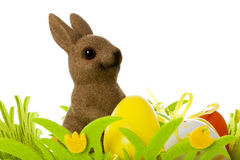 Easter bunny and eggs Stock Images