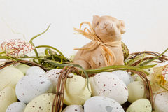 Easter bunny on eggs Stock Image