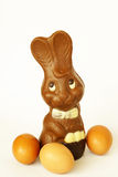 Easter bunny and eggs Royalty Free Stock Images