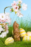 Easter bunny and eggs royalty free stock photos
