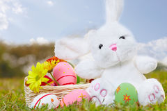 Easter bunny and eggs b Stock Image