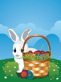 Easter Bunny with Eggs in the Basket Stock Photography