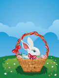 Easter Bunny with Eggs in the Basket Royalty Free Stock Photos