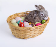 Easter Bunny and Eggs in Basket Stock Photos