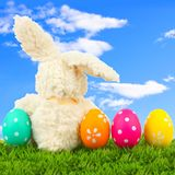 Easter bunny with eggs and blue sky Royalty Free Stock Images