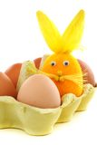 Easter bunny with eggs in the box. Royalty Free Stock Images