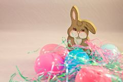 Easter rabbit bunny eggs Royalty Free Stock Photos