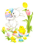 Easter Bunny with Eggs and Chick Royalty Free Stock Photography