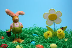 Easter Bunny with eggs and chicken. In grass on blue  background Royalty Free Stock Photography