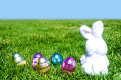Easter bunny with eggs in field Stock Photo