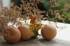 Easter bunny and eggs and flowers Stock Photos