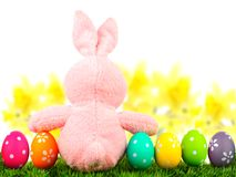 Easter bunny and eggs, with flowers Royalty Free Stock Photography