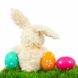 Easter bunny with eggs on grass Royalty Free Stock Photography
