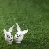Easter bunny eggs in green back Stock Images