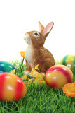 Easter bunny with eggs on a lawn Royalty Free Stock Photo