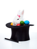 Easter bunny with eggs in a magician hat - isolated Stock Photography