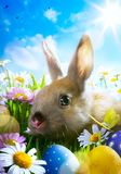 Art Easter bunny, Easter eggs and spring flower Stock Photography