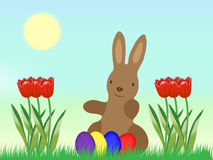 Easter Bunny with Eggs and tulip on grassland Royalty Free Stock Photo
